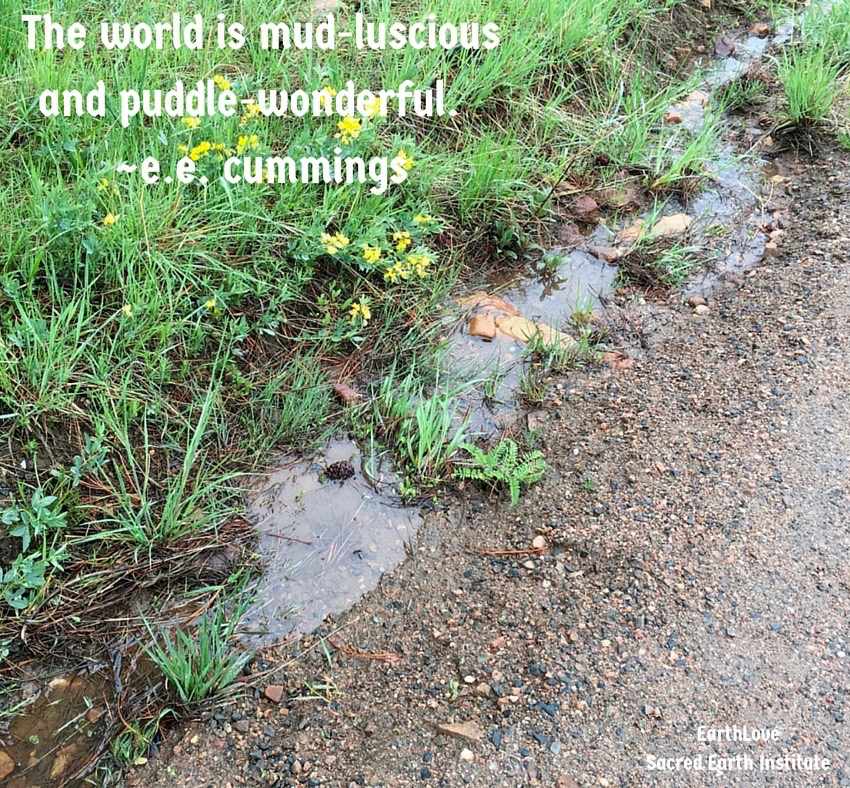 The World is Mud-Luscious